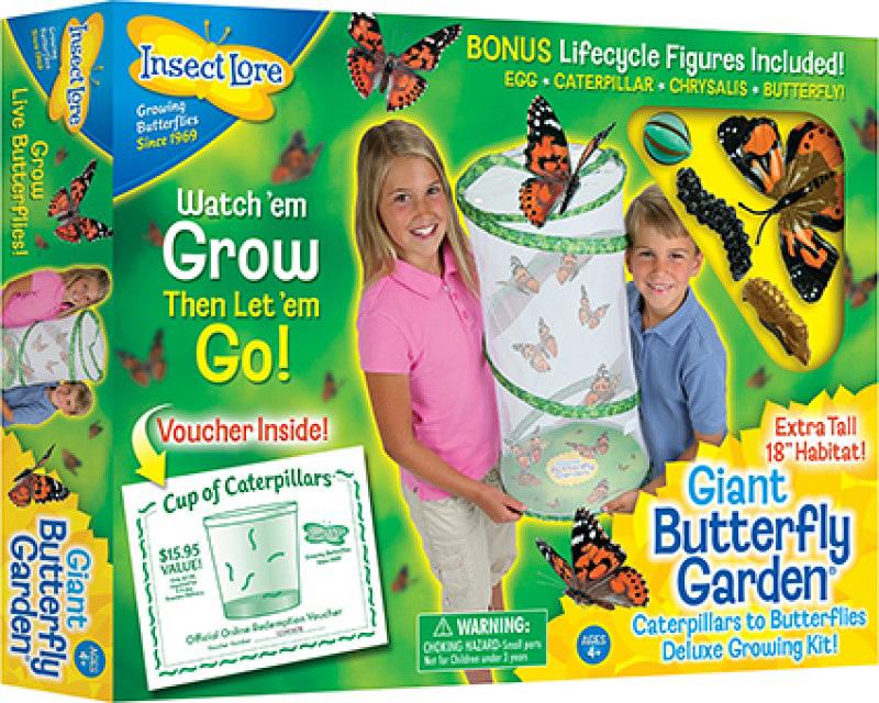 Butterfly Garden - Giant