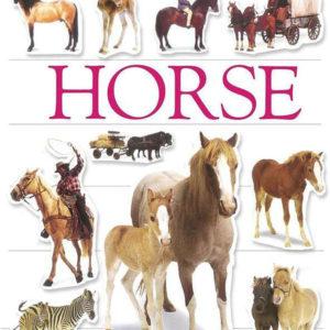 Sticker Book, Horse