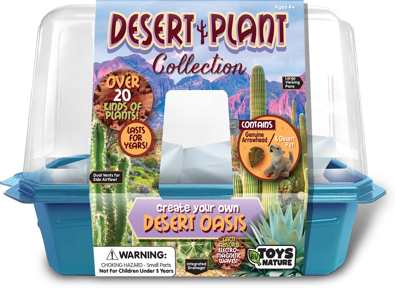 Desert Plant Collection