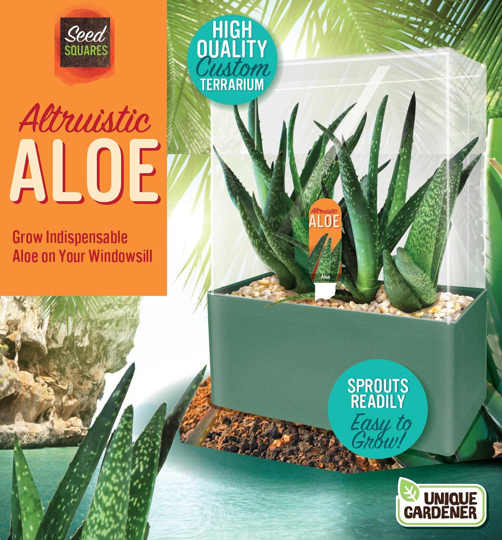 Altruistic Aloe