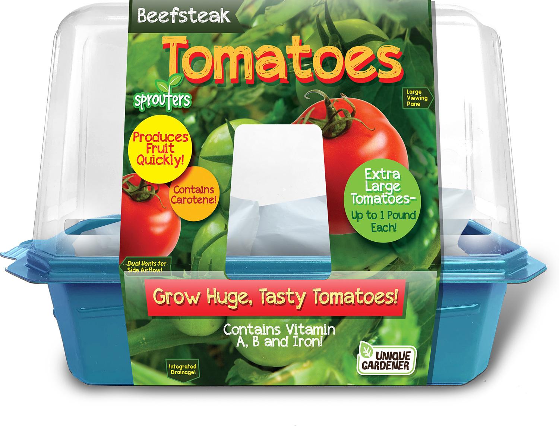 Beafsteak Tomatoes